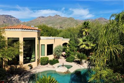 Tucson Single Family Home Active Contingent: 6010 N Desert Moon Court