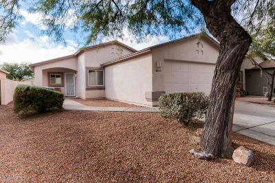 Single Family Home Active Contingent: 8685 S Desert Dove Drive