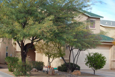 Pima County, Pinal County Single Family Home For Sale: 6730 S Parliament Drive