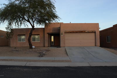Pima County Single Family Home For Sale: 9266 N Whipsnake Way