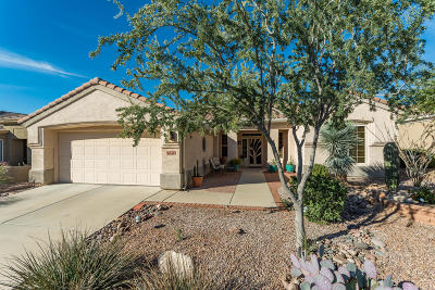 Marana Single Family Home For Sale: 13457 N Heritage Gateway Avenue