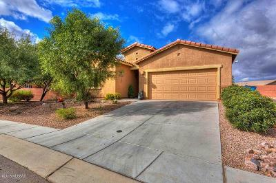 Sahuarita Single Family Home For Sale: 749 N Ivy Dale Lane