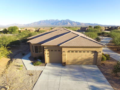 Pima County Single Family Home For Sale: 5750 S Atascosa Peak Drive