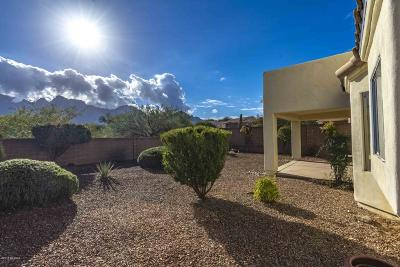 Tucson Single Family Home For Sale: 11884 N Meteor Place