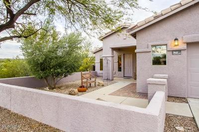 Tucson Single Family Home Active Contingent: 3869 N Magnetite Lane