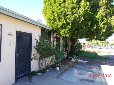 Pima County Single Family Home For Sale: 765 W Calle Lerdo