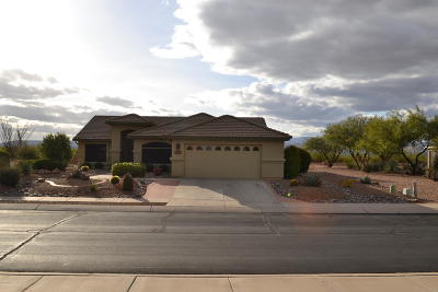 Green Valley  Single Family Home For Sale: 1341 N Goldeneye Way