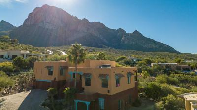 Oro Valley Single Family Home For Sale: 1280 E El Conquistador Way