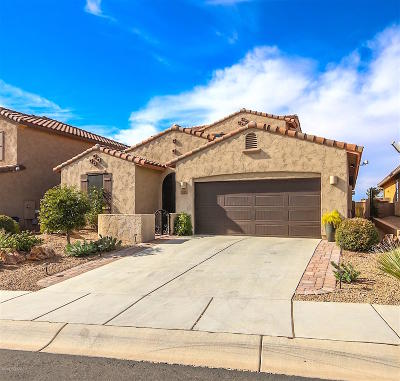 Marana Single Family Home For Sale: 12503 N Summer Wind Drive