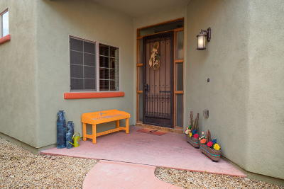 Tubac Single Family Home For Sale: 2195 Embarcadero Way