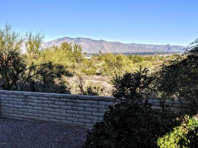 Tucson Single Family Home For Sale: 3857 W Geode Court
