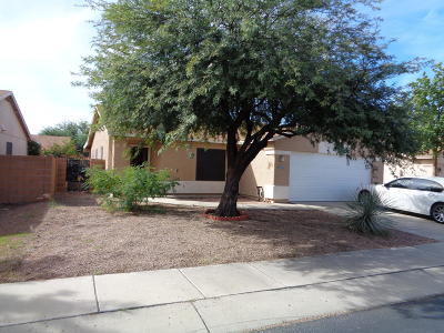 Pima County Single Family Home For Sale: 3051 W Autumn Breeze Drive