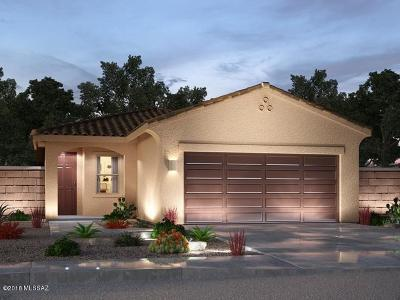 Sahuarita Single Family Home For Sale: 948 E Bottomlands Lane