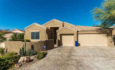 Pima County Single Family Home For Sale: 5360 W Christmas Cholla Street