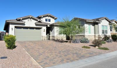 Marana Single Family Home For Sale: 14171 Hidden Arroyo Pass
