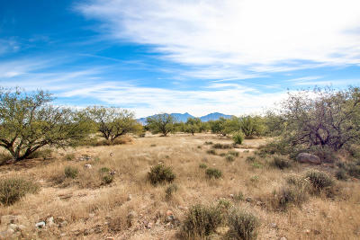 Green Valley Residential Lots & Land For Sale: 4115 S Camino De La Canoa