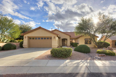 Green Valley  Single Family Home For Sale: 2336 E Desert Pueblo Pass