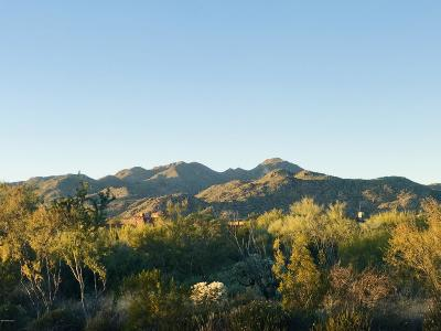 Oro Valley Residential Lots & Land For Sale: 14041 N Old Forest Trail Drive #114