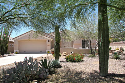 Pima County Single Family Home For Sale: 13597 N Heritage Gateway Avenue