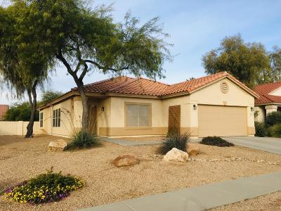 Tucson Single Family Home For Sale: 8473 N Deer Valley Drive