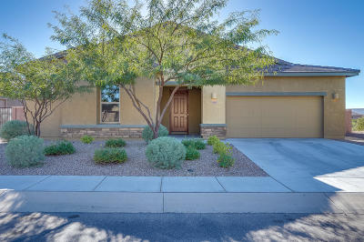 Sahuarita Single Family Home For Sale: 1266 E Stronghold Canyon Lane
