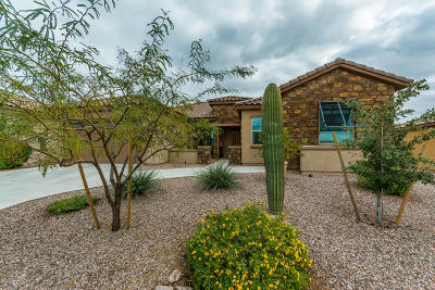 Pima County Single Family Home For Sale: 14242 N Bright Angel Trail