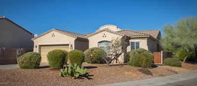 Tucson Single Family Home For Sale: 8017 N Wayward Star Drive