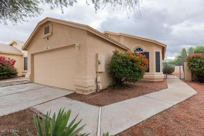 Tucson Single Family Home For Sale: 3325 W Millwheel Lane