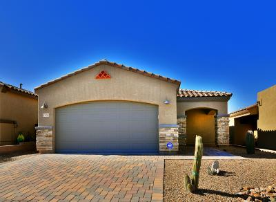 Tucson Single Family Home For Sale: 1130 S Red Colt Road