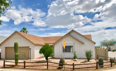 Pima County Single Family Home Active Contingent: 4051 W Treece Way