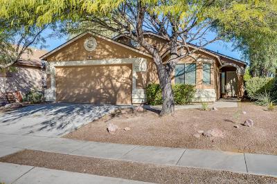 Pima County Single Family Home For Sale: 4315 E Cholla Desert Trail