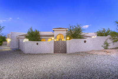 Pima County, Pinal County Single Family Home For Sale: 9610 N Camino Del Plata