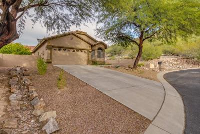 Pima County Single Family Home For Sale: 7781 E Beautiful Place