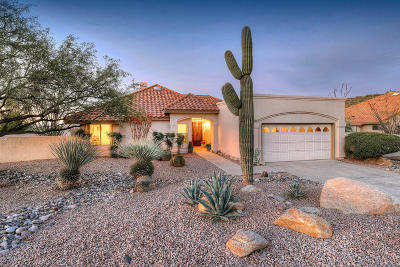 Pima County Single Family Home For Sale: 6372 E Calle Cavillo