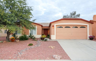 Tucson Single Family Home For Sale: 7744 W Rising Moon Way