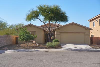 Tucson Single Family Home For Sale: 7111 W Amber Burst Court