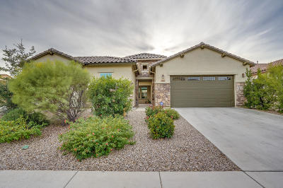 Marana Single Family Home For Sale: 3463 W Desert Peace Drive