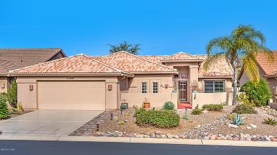 Tucson Single Family Home For Sale: 63530 E Desert Peak Drive
