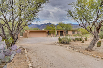 Pima County, Pinal County Single Family Home Active Contingent: 9191 E Kayenta Drive