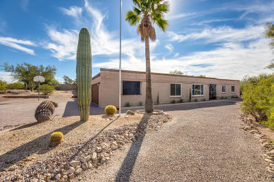 Tucson Single Family Home For Sale: 6812 N Machiavelli Way