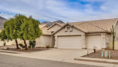 Pima County Single Family Home For Sale: 7561 E Camino Amistoso