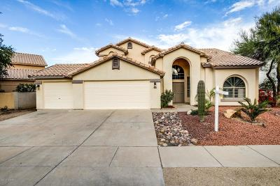 Tucson Single Family Home For Sale: 6880 W Tombstone Way