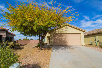 Pima County, Pinal County Single Family Home For Sale: 2314 S Adventure Trail