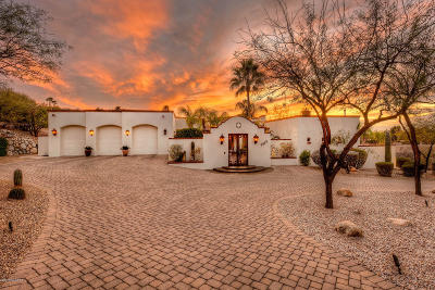 Pima County Single Family Home For Sale: 7910 N Porto Fino Circle