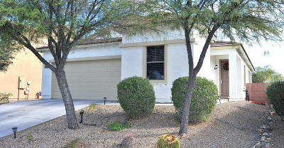 Marana Single Family Home Active Contingent: 12956 N Lea Maw Drive