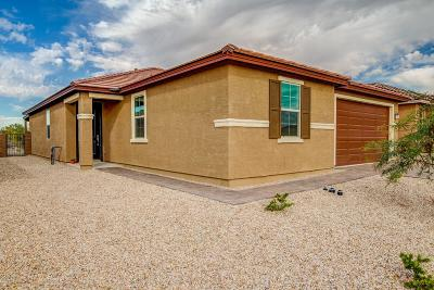 Tucson Single Family Home For Sale: 8882 N Hardy Preserve Loop