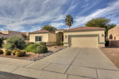 Pima County Single Family Home For Sale: 3414 S Abrego Drive