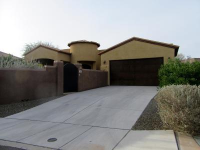 Tucson Single Family Home For Sale: 3020 E Placita Aldea Linda