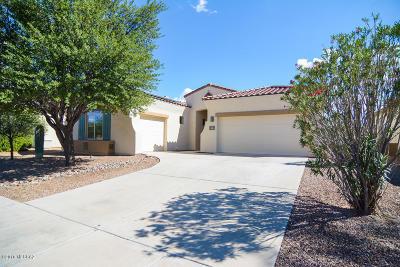 Tucson Single Family Home For Sale: 7699 W Desert Spirits Drive