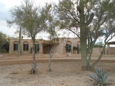 Tucson Single Family Home For Sale: 6701 N Abington Road